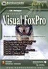 IT277 - Visual Foxpro
